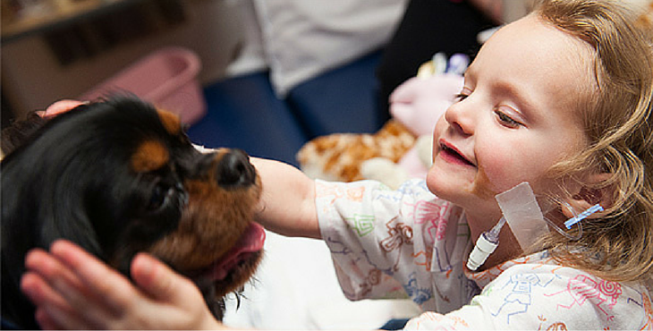 dogs-helps-child-cancer-cover