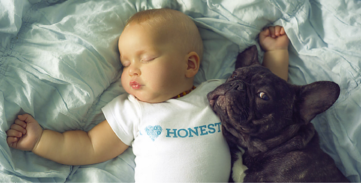 dog-baby-cover-3