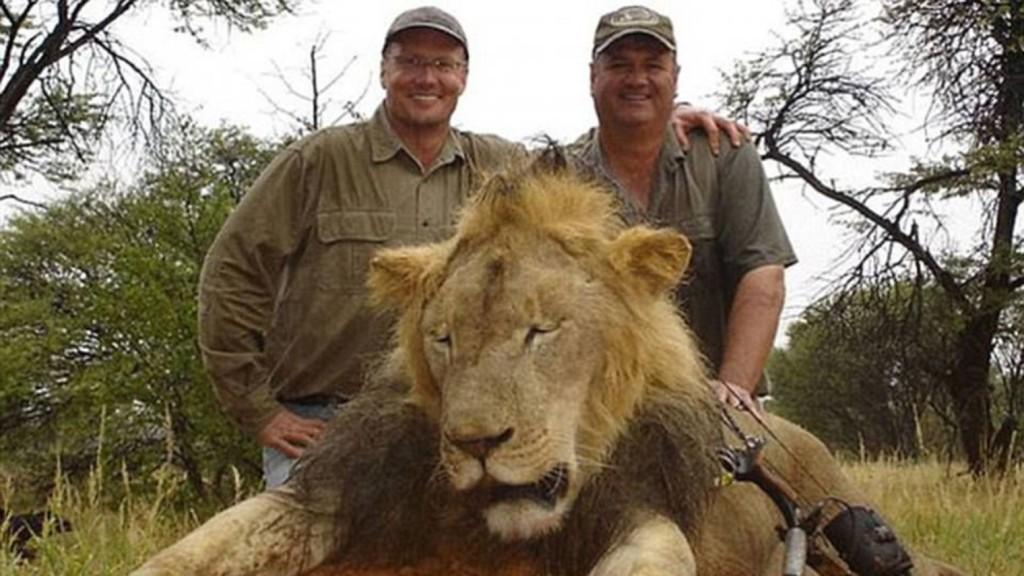 Cecil-lion-endangered-2