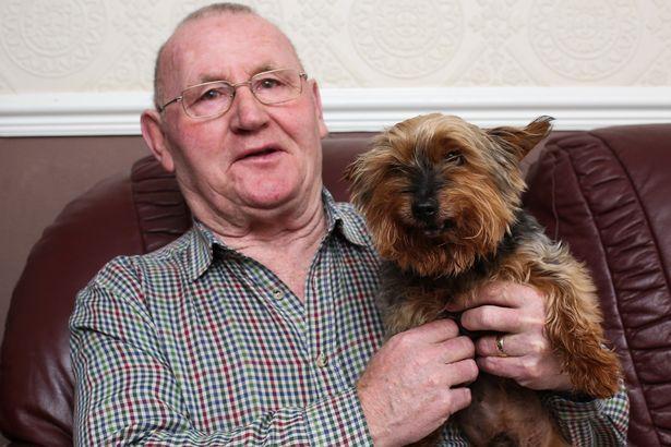 oldest-dog-britain-1