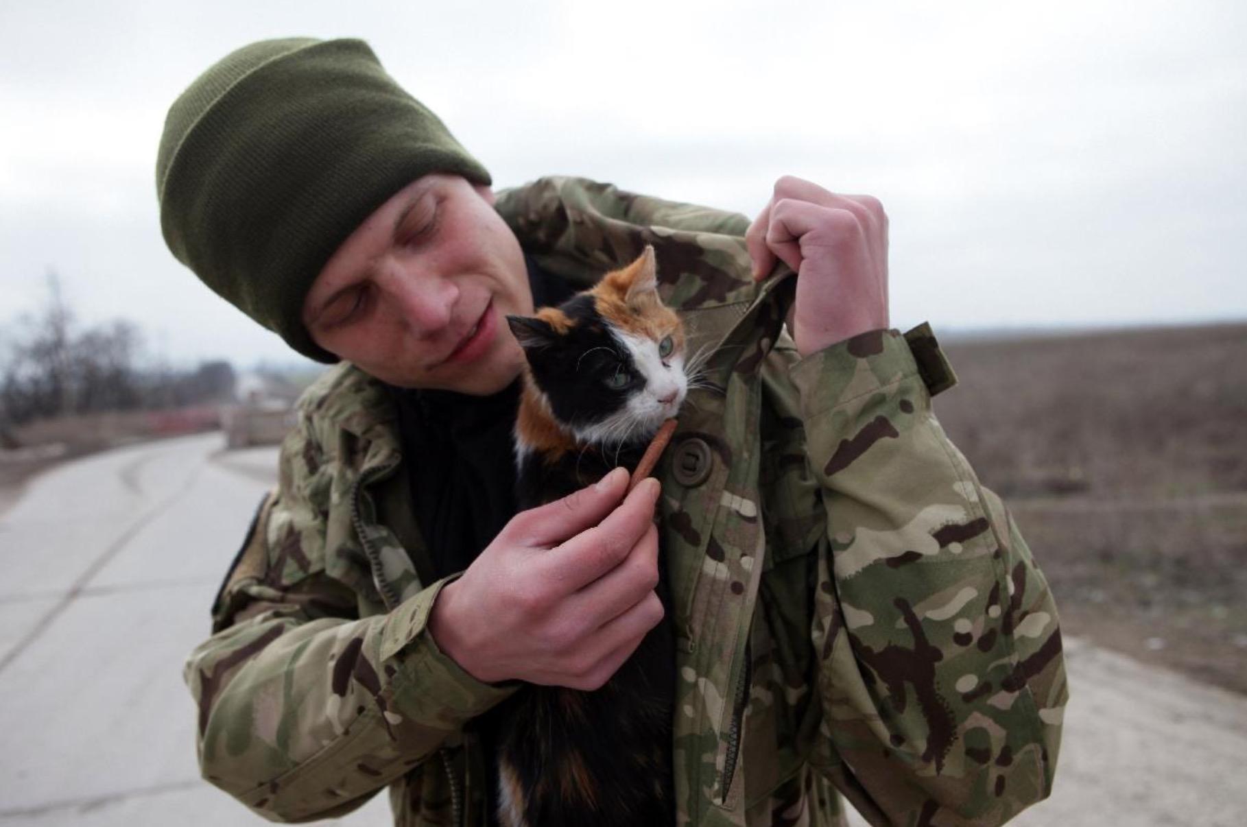 ukraine-soldats-chats-chiens-2