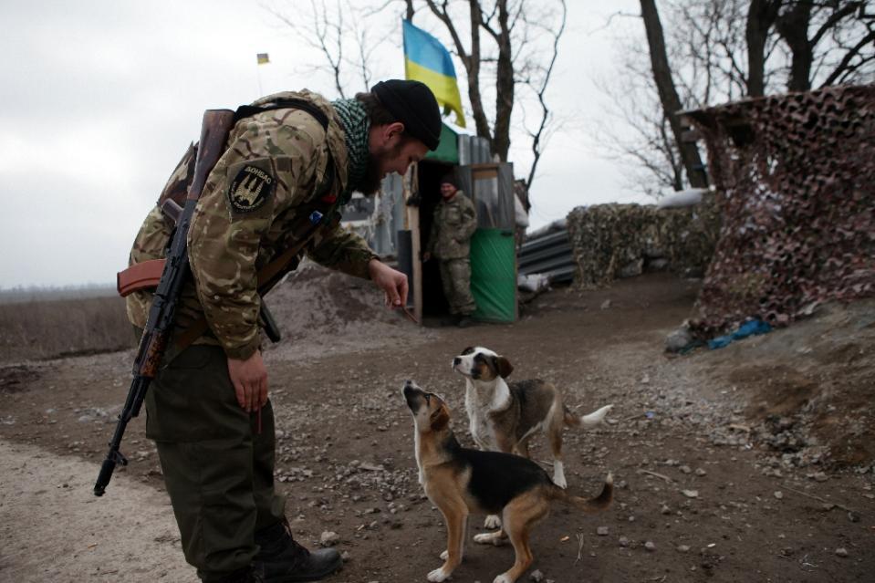 ukraine-soldats-chats-chiens-5