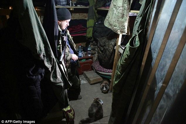 ukraine-soldats-chats-chiens-8