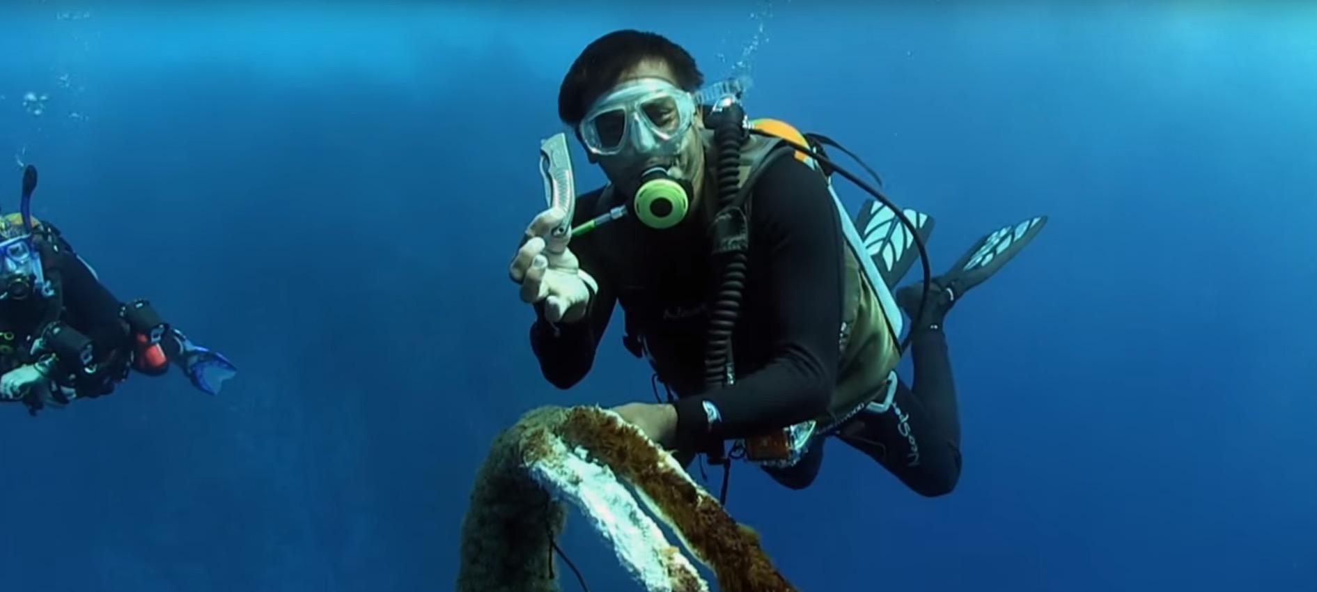 whale-shark-rescue-4