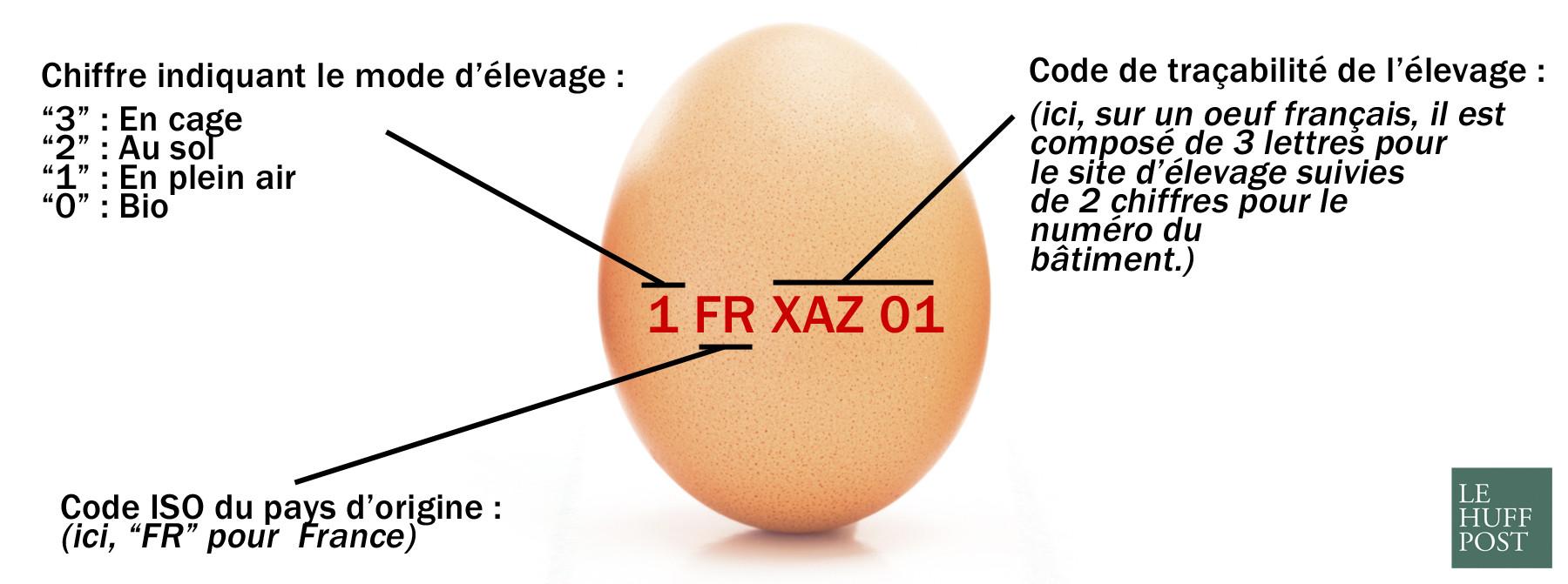 eggs new 21