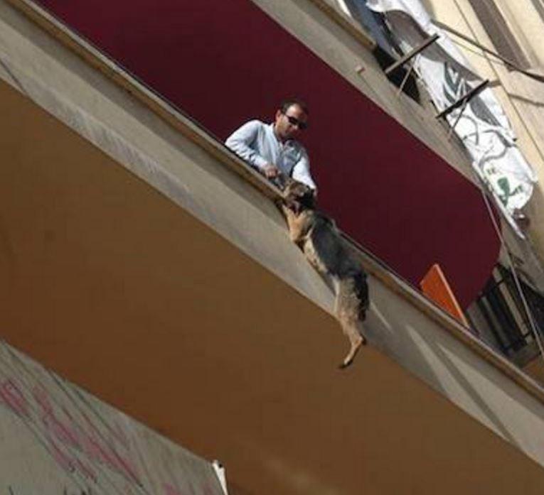 bella-balcon-sauvetage-5