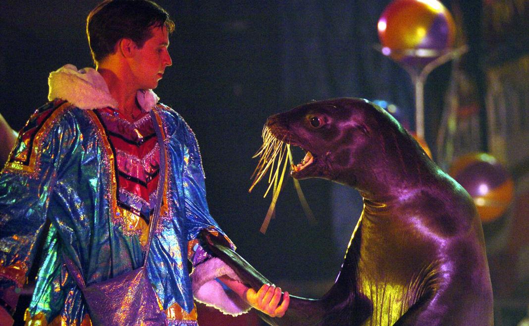 animaux-cirque-petition-patrimoine-culturel-3