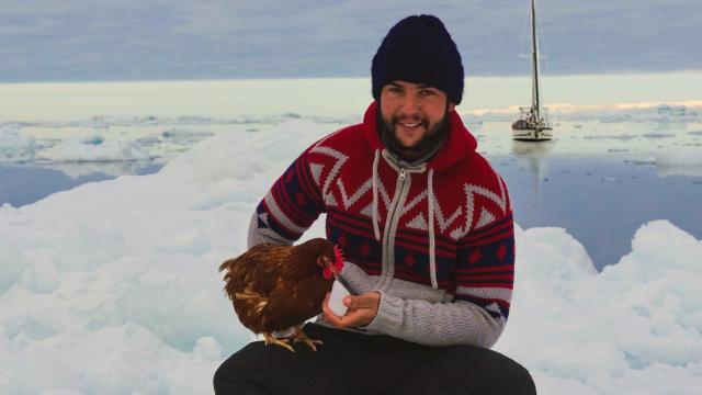 avec-monique-la-poule-je-vais-hiverner-au-groenland