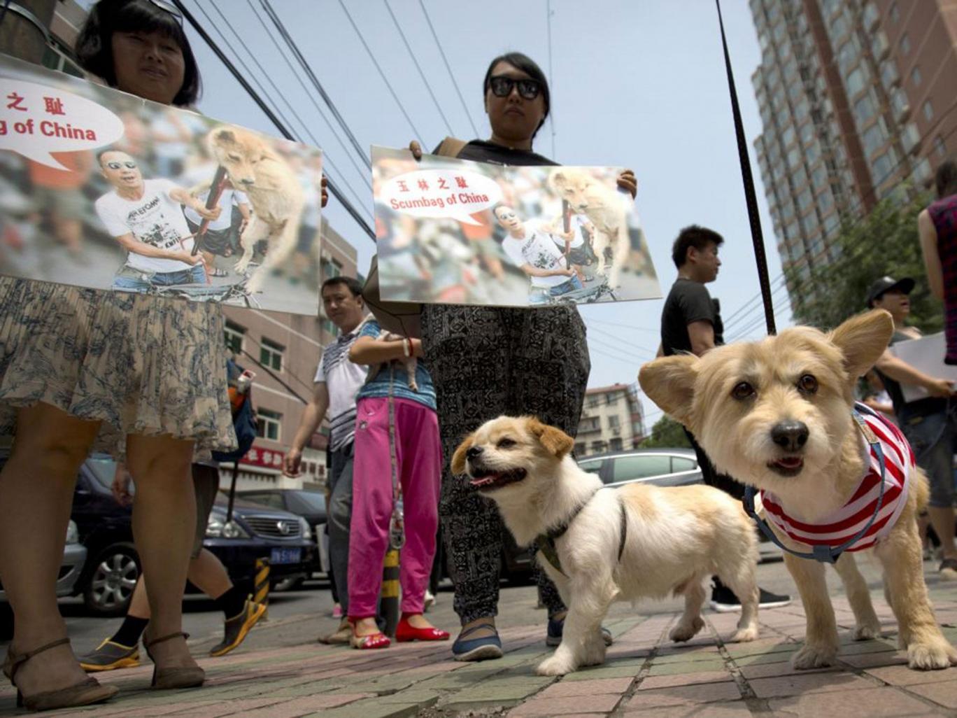 yulin-festival-chien-11