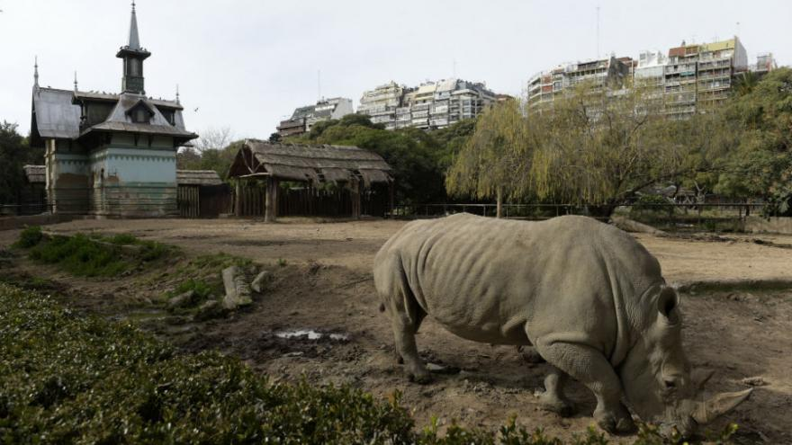 zoo-buenos-aires-fermeture-1