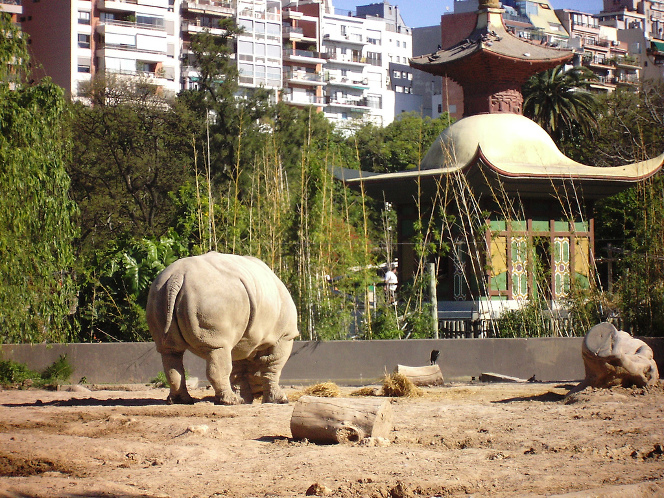 zoo-buenos-aires-fermeture-3