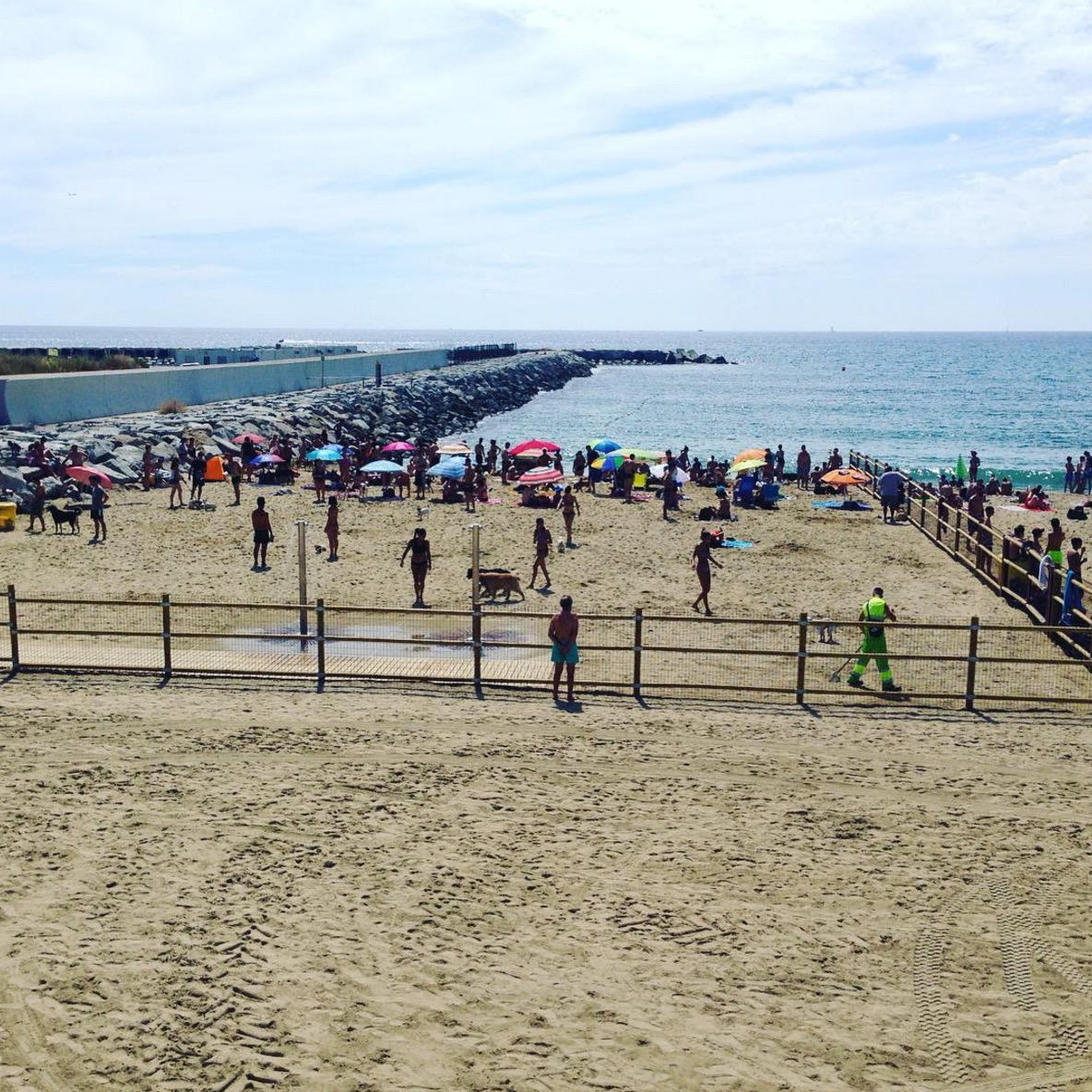 plage-reservee-chiens-barcelone-5