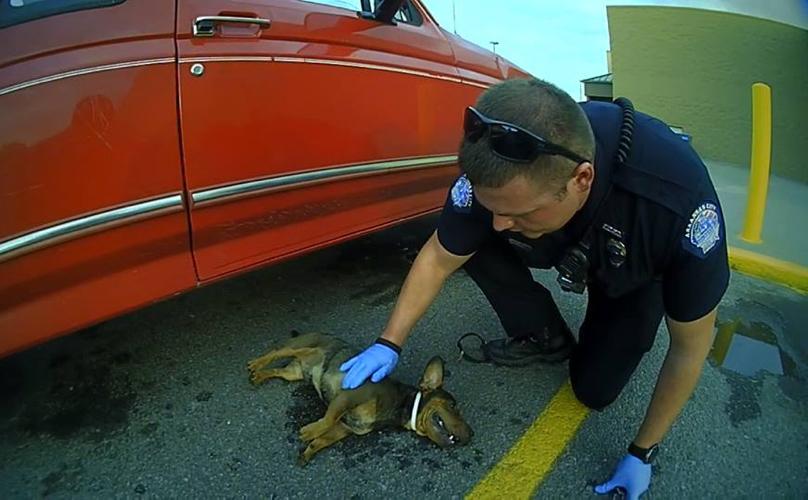 policiers-Kansas-sauvetage-chien-parking-5