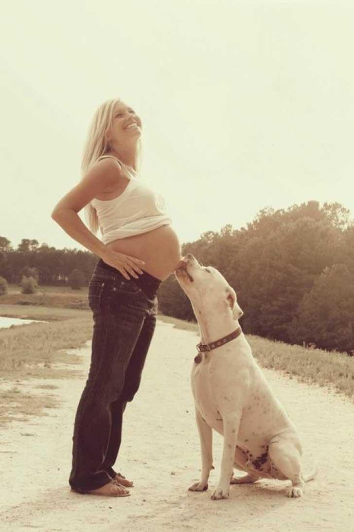 dog-waiting-baby-7