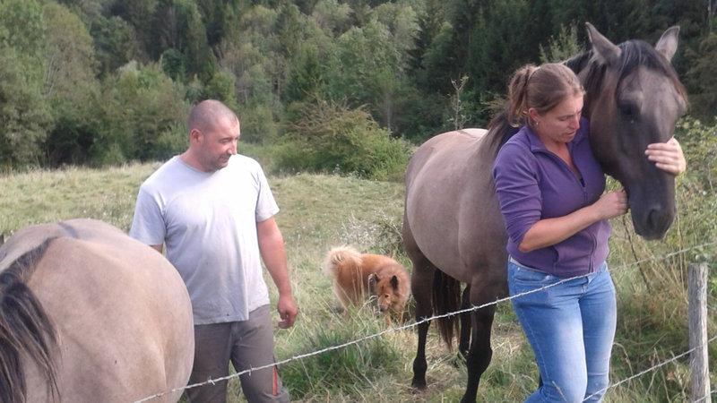 tresor-cheval-biche-chasse-1