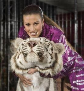 tigres-cirques-accident-2