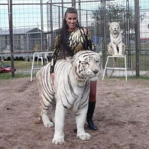 tigres-cirques-accident-5