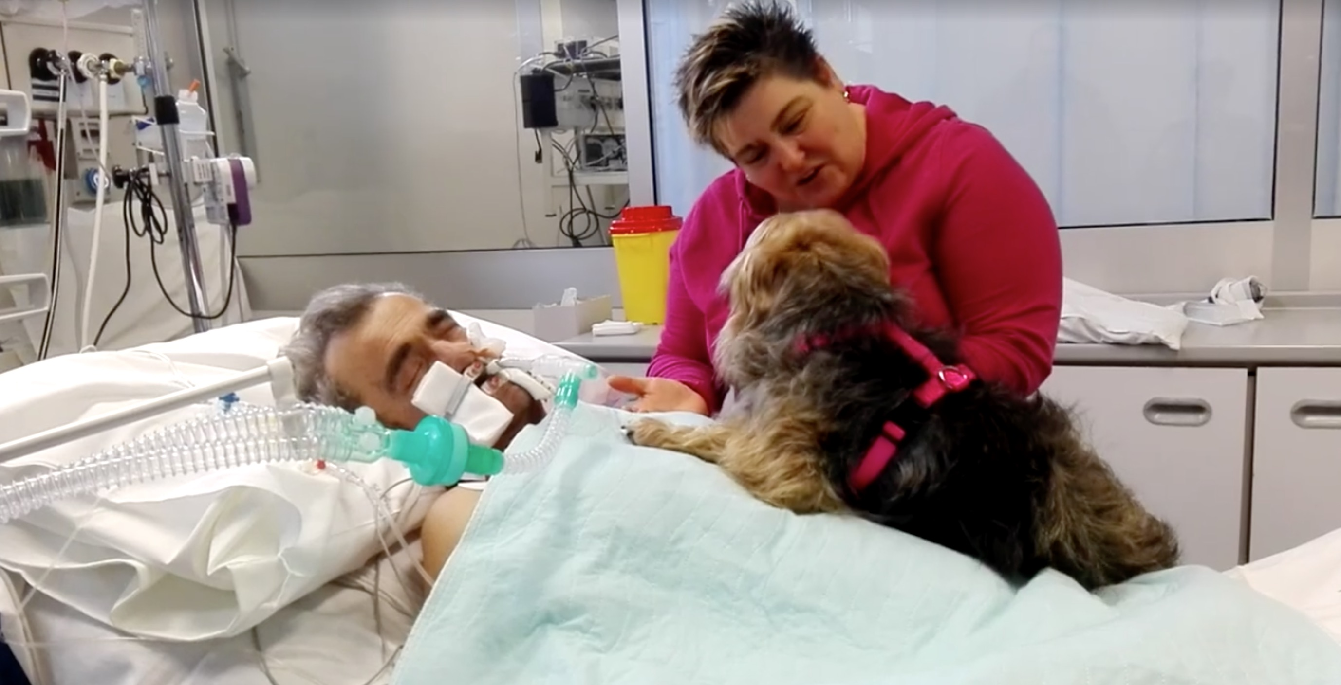 coma-hopital-chien-italie-4