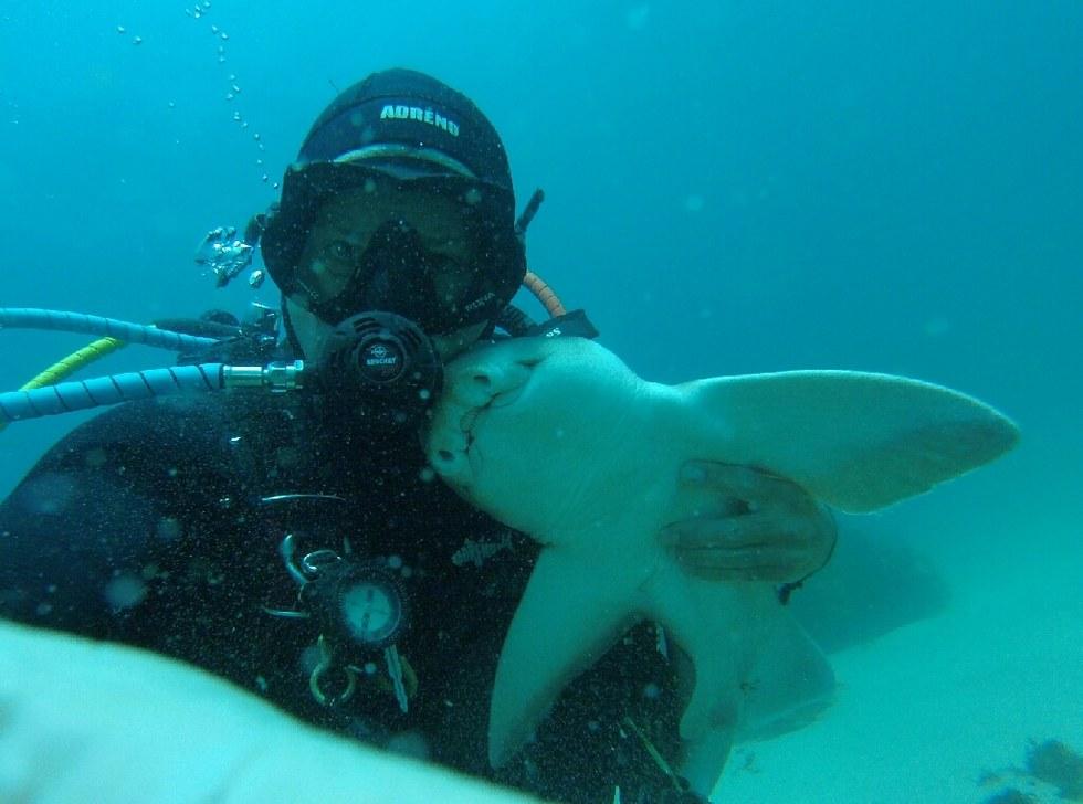 rick-shark-friend-4