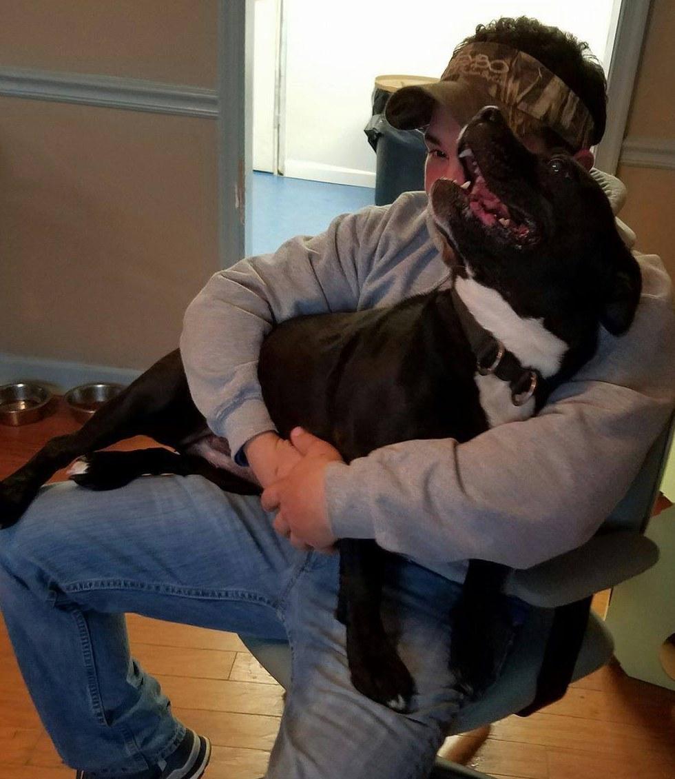 scarlet-chien-sourde-adoption-1