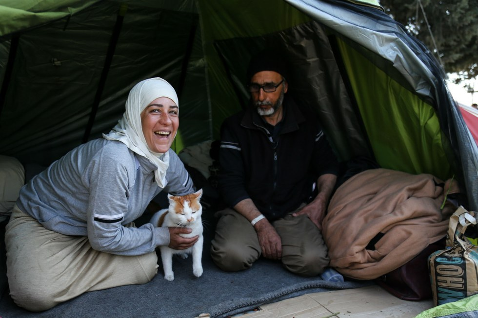 tabboush-chat-syrie-refugies-3