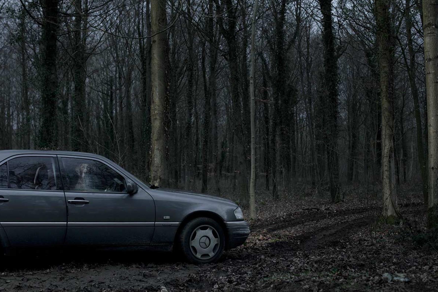 Martin-Usborne-photographe-chiens-voitures-1