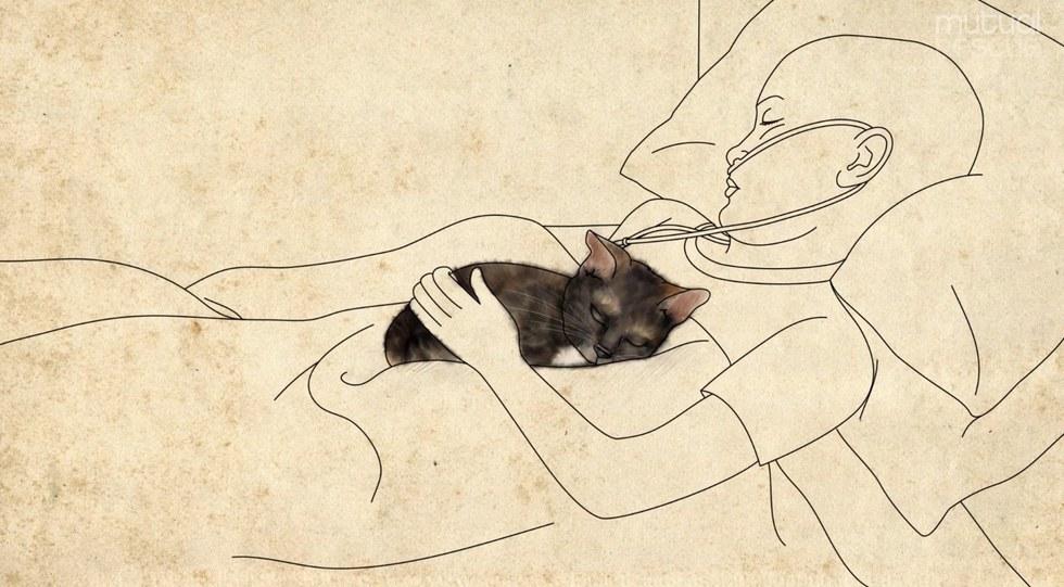eliza-kylie-kitten-3