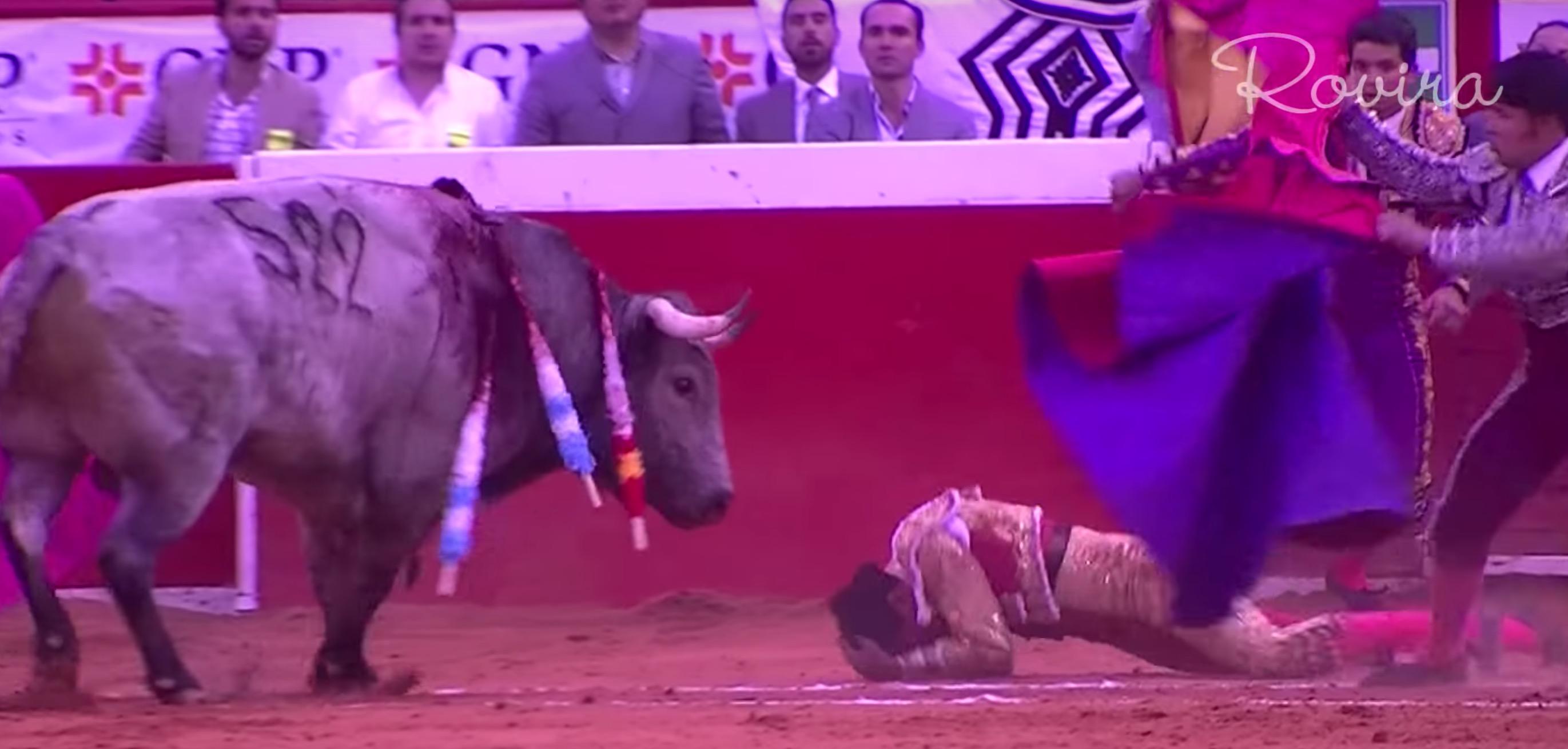 antonio-romero-torero-mexique-accident-9