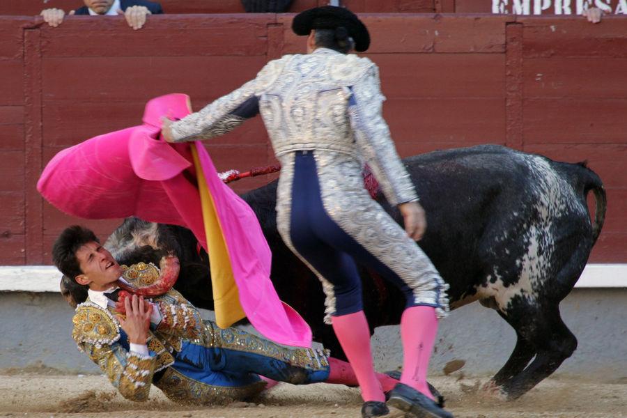 Daniel-Garcia-navarrete-corrida-madrid-9