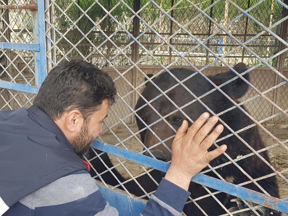 alaa-aleppo-zoo-1