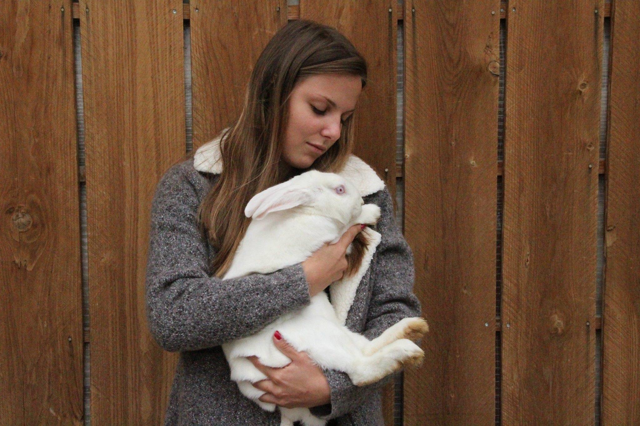 chloe-machado-refuge-lapins-isere-13