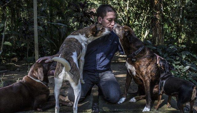 homeless-dog-shelter-rio-3