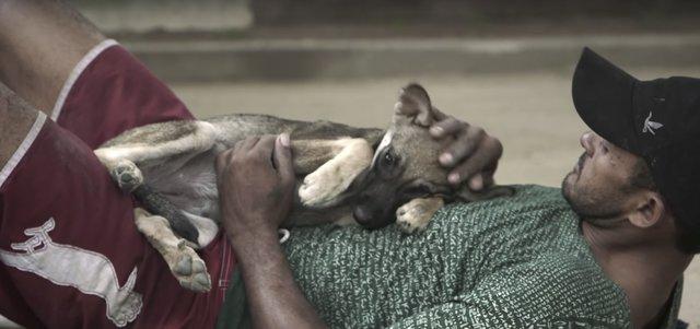 homeless-dog-shelter-rio-5
