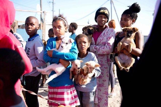 nanuk-chienne-sauvetage-afrique-du-sud-2