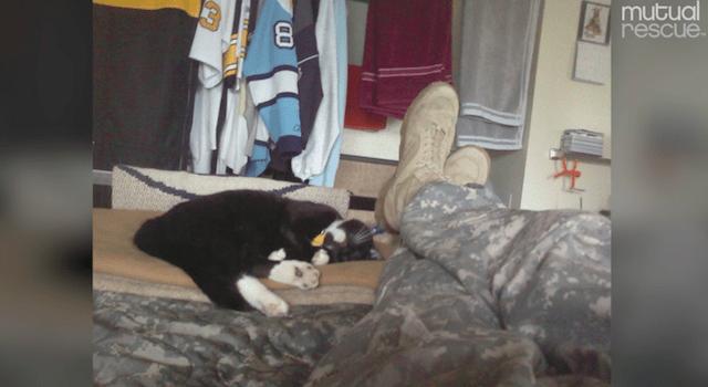 scout-chat-joshua-soldat-sauvetage-1