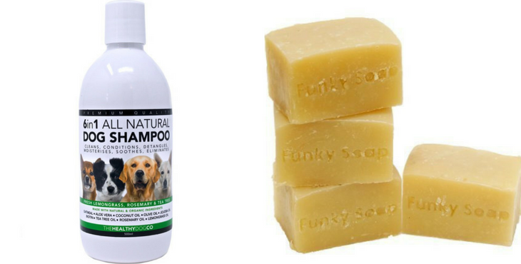 shampoing pour chien