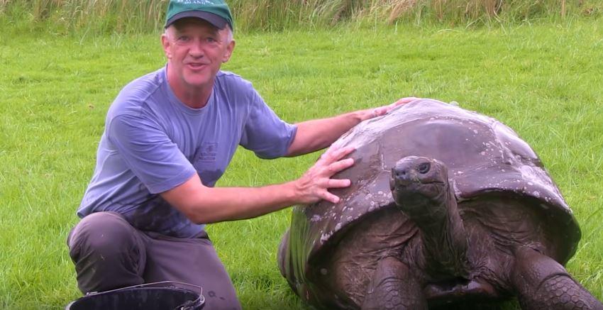 tortoise-oldest-4