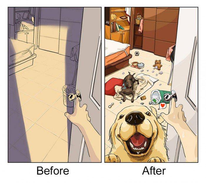 dog-change-life-1