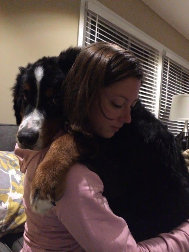 best-dog-ever-10