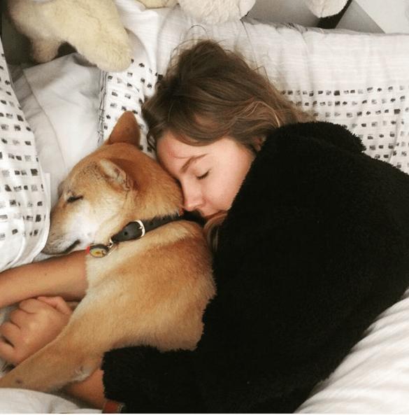 dog-aid-sleep-2