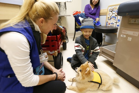 dogs-helps-child-cancer-5