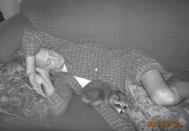 loki-raccoon-friendship-7