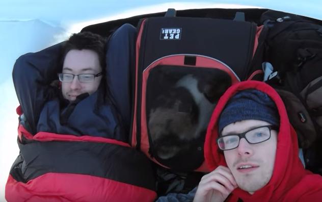 stevie-hiking-cat-3