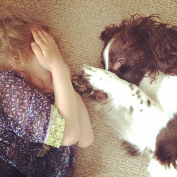 dog-human-love-1