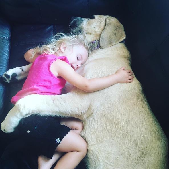 dog-human-love-3