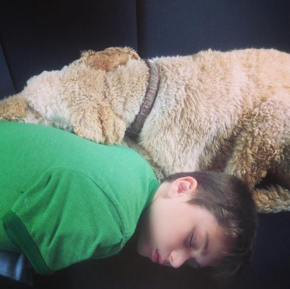 dog-human-love-4