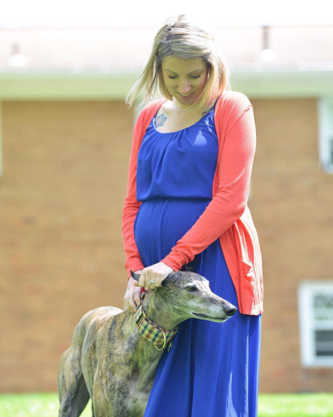mosley-greyhound-rescue-2