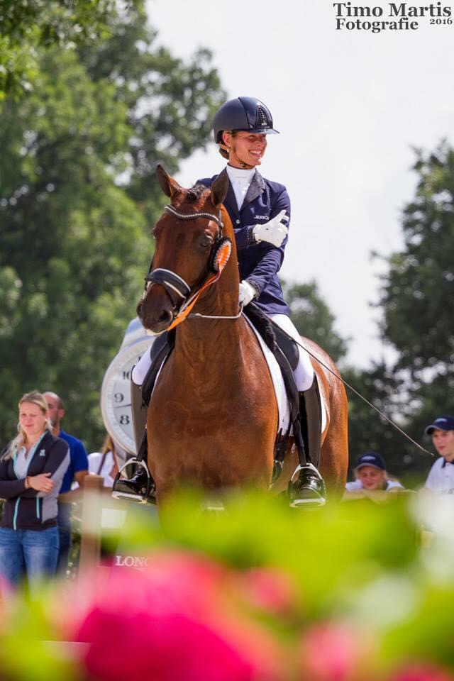 parzival-olympics-horse-2