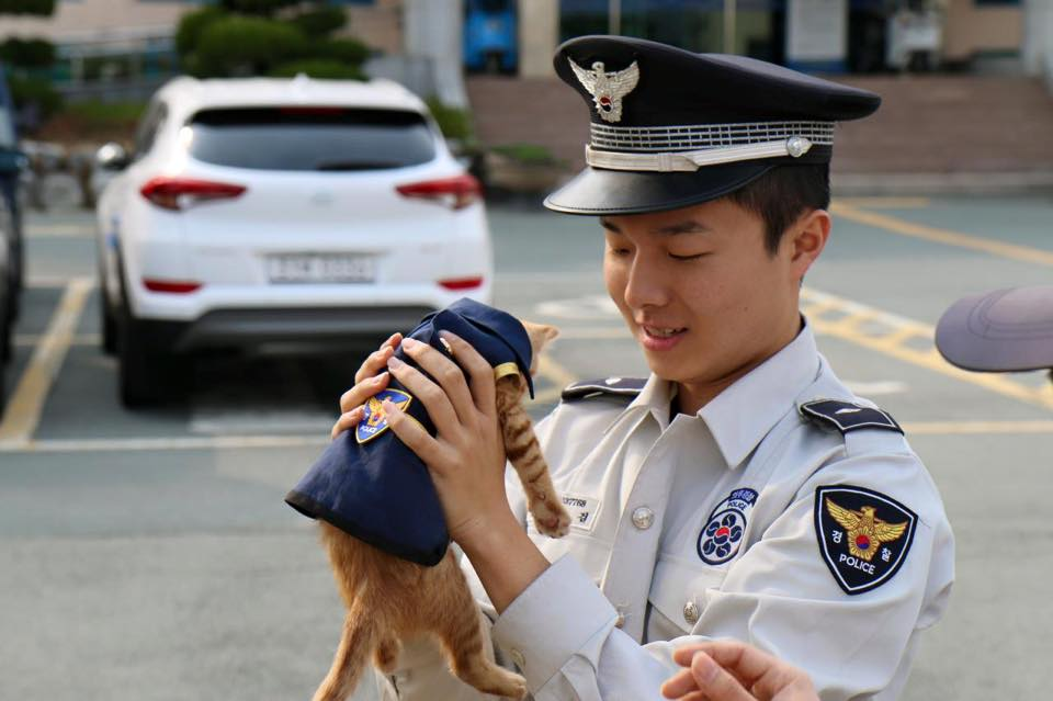 cat-molang-police-5