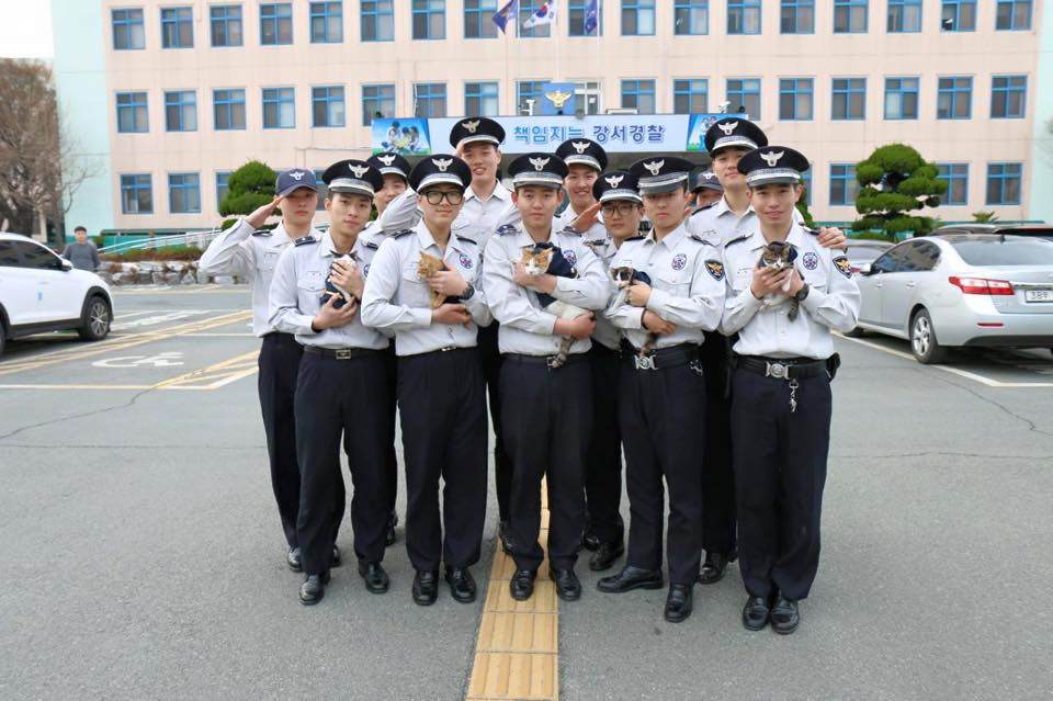 cat-molang-police-8